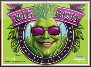 Advanced Nutrients BIG BUD, Akcelerator Kwitnienia, 1 L