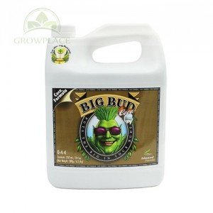 Advanced Nutrients Big Bud Coco 10 L