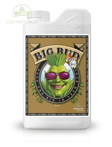 Advanced Nutrients Big Bud Coco 1 L